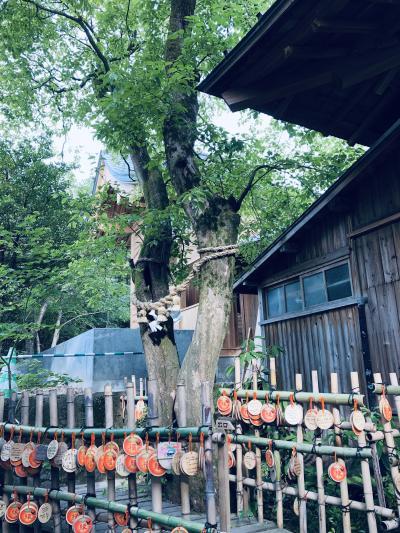 長崎旅行①雲仙温泉