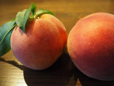 2019年6月 週末温泉旅 in 笛吹川温泉 別邸 坐忘 ~ 梅雨 & Peach!!!
