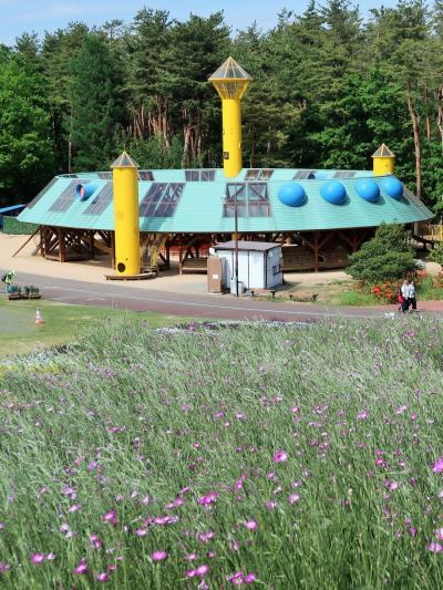 信州令和12 花フェスタk 森の遊び場-あそびの森-色いろと ☆触れる彫刻-感じるよろこび