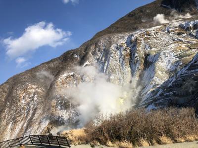 箱根1泊2日 かけ流しのにごり湯にほっこり&宿カフェグルメ 車ナシ女2人旅 その2