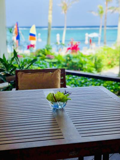 今年のGWは10連休!やっぱり沖縄へ!子連れでムーンビーチ&サザンビーチ泊 ④前半