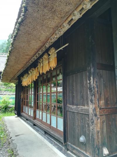 【西湖・勝沼】ふじやま温泉と西湖いやしの里根場