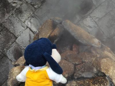 グーちゃん、梅雨の南伊東合宿へ行く!(そして、徘徊がはじまった・・・。編)