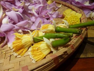 ベトナム ハノイ 蓮茶づくり