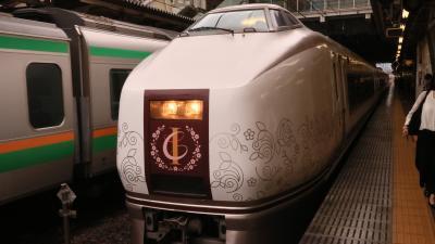 踊り子号とIZU CRAILEで伊豆熱川へ、帰りはスーパービュー踊り子で