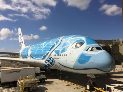ANA A380 フライングホヌ ハワイ 8日間 スイートラウンジはステキです☆前編