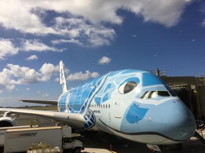 ANA A380 フライングホヌ ハワイ 8日間 スイートラウンジはステキです☆後編