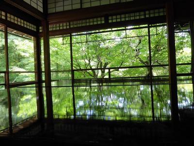 2019 京都旅行  瑠璃光院 貴船神社 観光編