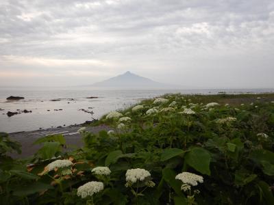2019 6月の北海道 礼文島へ 【1】