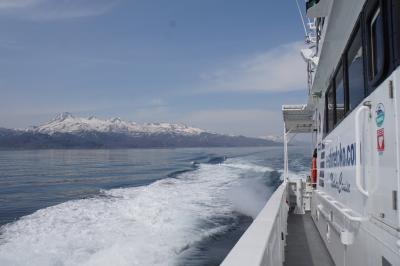 冬に引き続き春の道東バスツアー 知床峠・イルカ・クジラ・バードウォッチング