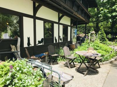 初夏の信州旅【2019.6】…まきば公園のミントちゃんって誰?萌木の村で落馬、、、《4日目》