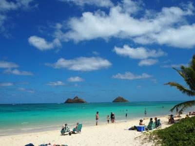 シェラトンに泊まる6泊8日のハワイ旅行part2~カイルア・ラニカイビーチに行ってきた~