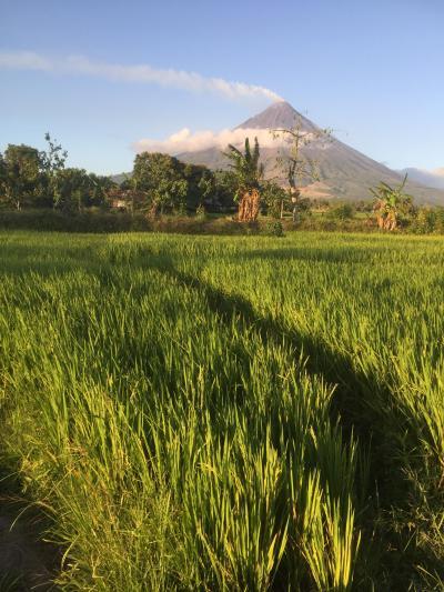 ルソンの富士?もっと美しいかも。マヨン火山を堪能。