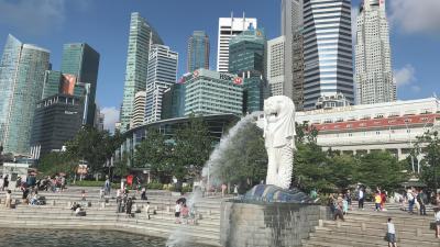 母と行く!20年ぶりシンガポール! ③