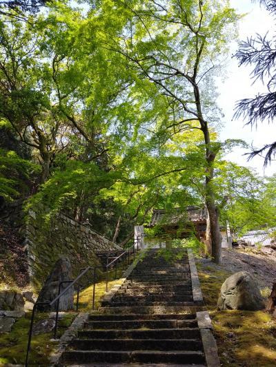 その4・東京~倉敷、そのあと京都。往復1640キロの旅