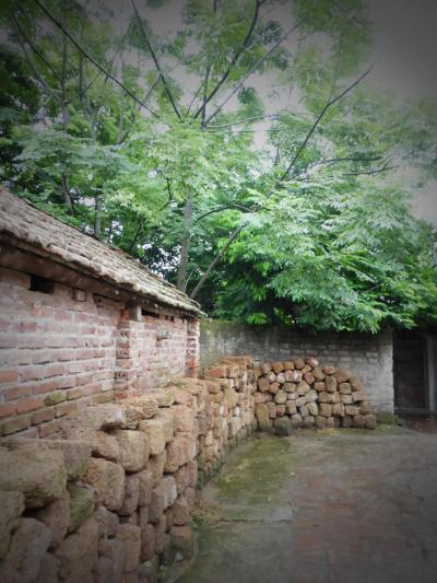 ハノイ発デイトリップ・雨あがりのドゥオンラム村散策(親子旅第13弾ベトナム北部 05ハノイ郊外)