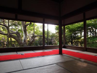 新緑の京都 二日目【3】 大原の散策、三千院近く魚山声明のお寺を廻る 実光院、來迎院、勝手神社、勝林院、宝泉院
