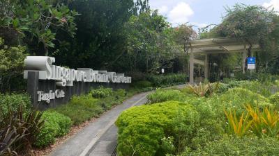 シンガポール訪問記 2019年5月 ホテル滞在とボタニックガーデン(植物園)。