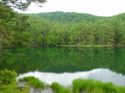 緑に癒されに 御射鹿池~横谷観音~白駒の池