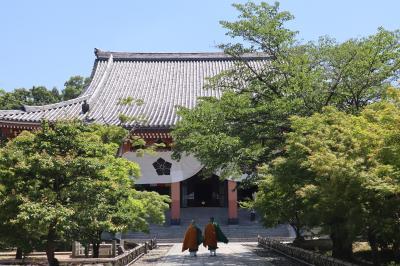 京都・さんぽ地図の旅 ⑦三十三間堂~智積院