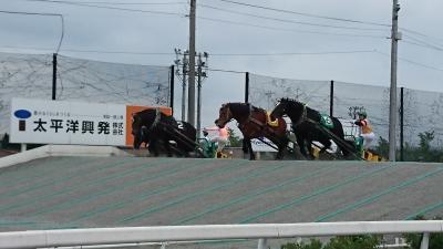 1泊2日帯広旅行【ばんえい競馬の写真多めです】