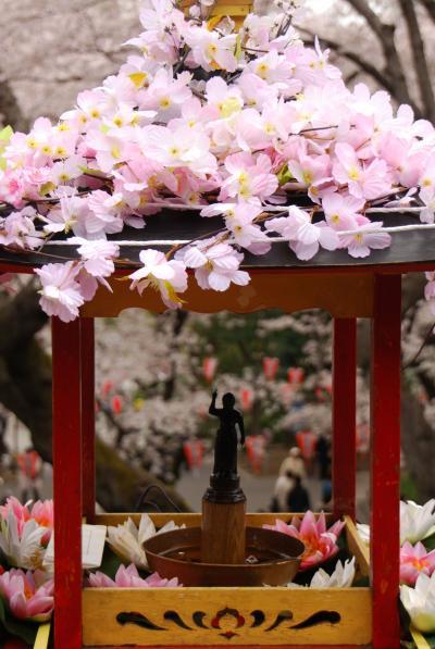 ひとりお花見部 花まつりに浅草と上野でお花見