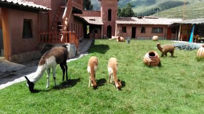 南米ツアー シニア夫婦ペルーとボリビアへ5 ペルー編⑤ ラ・ラヤ峠を越えて