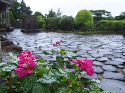 ナガアミの久米島ガチマヤーの旅 3