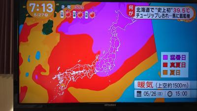 暑っーい!!ここは北海道じゃなかったっけ?3
