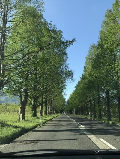 ゴールデンウィーク2019は琵琶湖をぐるっと旅!!④