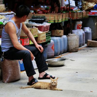 2019年 5月 中国・昆明 バンコクから雲南へ。昆明最大の農貿市場に行ってみたヨ!