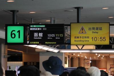 NH553、羽田→函館。機材整備で遅れ、1000円の補償があったが、予定変更で出費が増加。
