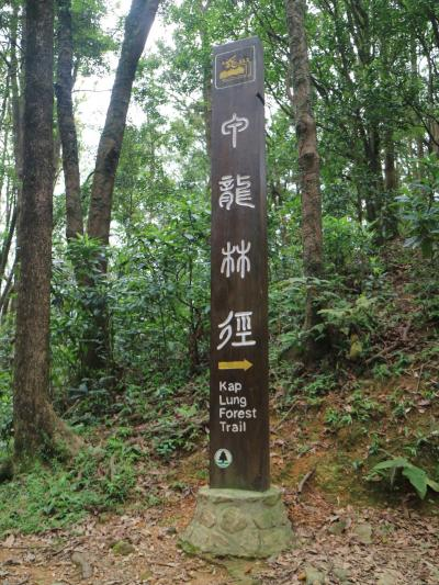 香港 甲龍林徑