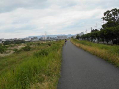猪名川沿いのサイクリング