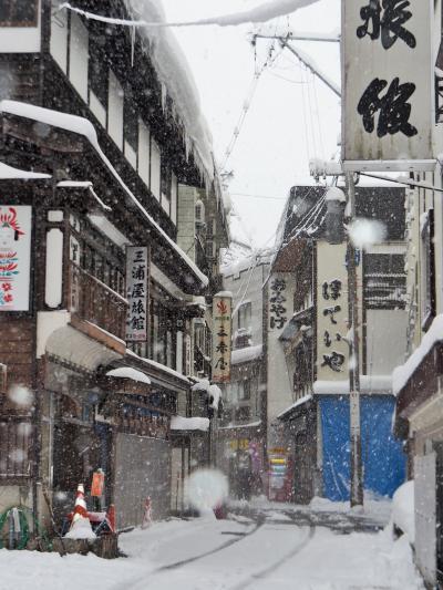 日本NO.2の豪雪地帯へGo!! **肘折(ひじおり)温泉*肘折幻想雪回廊**