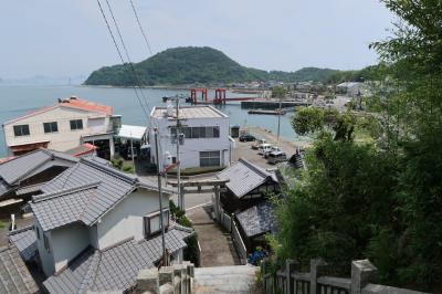 松山から一番近いみかんの島 興居島