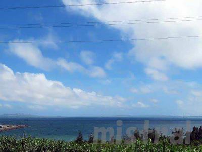初夏恒例 沖縄ツアー その1 北部編