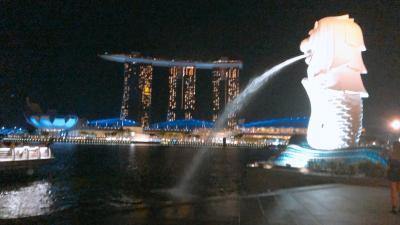 シンガポールトランジット観光!夜まで遊び倒す!