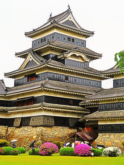 信州令和21 松本城h 本丸御殿跡など ☆ツツジ・フジの花咲いて