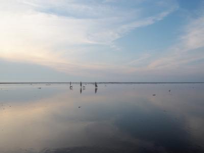 3泊5日で台湾一人旅[4]日帰り台中、いつか行きたいと思ってた鏡張りの風景が見られる高美湿地へ