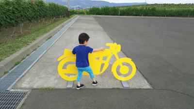 7月の富良野へお気に入りを探しに行く