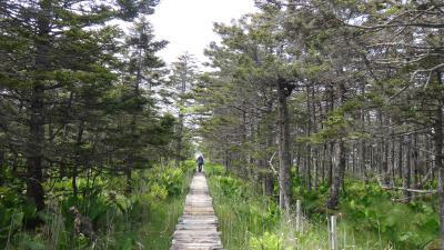 落石岬灯台 森と湿原をまっすぐ木道で抜けて岬へ