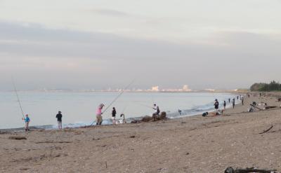 20年の夏はコロナで遊泳禁止/今は釣場として賑わう:穴場の鼓ケ浦海水浴場(山口誓子浜)