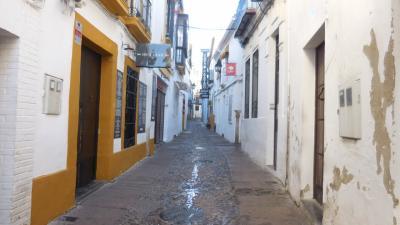 アンダルシアの春祭りから銀の道、そして巡礼の道を歩く 5 3日目① 朝のユダヤ人街散策