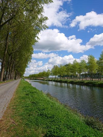シニア&子連れ オランダ・ベルギー 個人旅行 7日目 ブルージュ&ダム