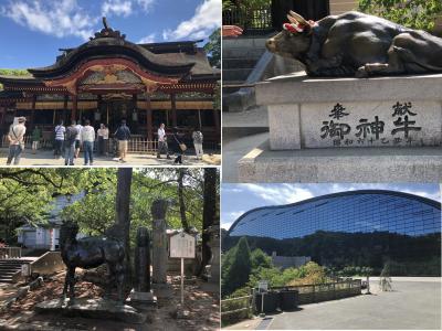 ANAトク旅マイルの九州旅行二日目、まずは太宰府天満宮を参拝し、九州国立博物館の立派な建物に感動