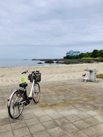 公共交通機関だけで行く青森一人旅 ④八戸近辺で海街を満喫(半日)