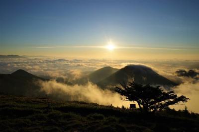 湯ノ丸山~池の平湿原 レンゲツツジ祭りと雲海登山