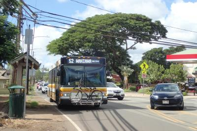ウミガメのANAでハワイに行きオアフ島を路線バスで観光してみた