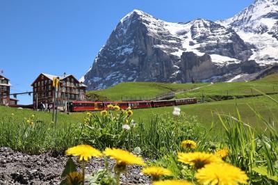スイス 花と絶景の旅 ④グリンデルワルトハイクとユングフラウヨッホ